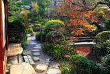 哲学の道 よーじやカフェの紅葉庭園