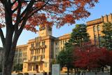 京都市役所 紅葉と本庁舎
