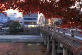 鴨川 紅葉越しの三条大橋