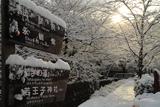 哲学の道 道標と雪景色