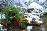 白沙村荘 マンリョウと雪見庭園