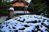 龍泉庵 苅込冠雪