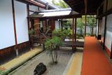 聖澤院 坪庭の南天