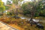 聖澤院 斑雪の方丈庭園