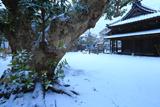 雪化粧した巽神社