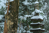冠雪の源頼朝墓