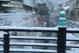 鎌倉 雪降る夷堂橋