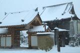 鎌倉上行寺の雪景色