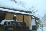 鎌倉山ノ内 雪降る明月院通り