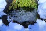 鎌倉 雪氷の底脱ノ井
