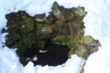残雪の泉ノ井