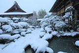 法源寺 庭園の雪景色