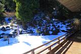 青蓮寺 雪見庭園のトピアリー