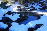 青蓮寺 池泉庭園の氷雪