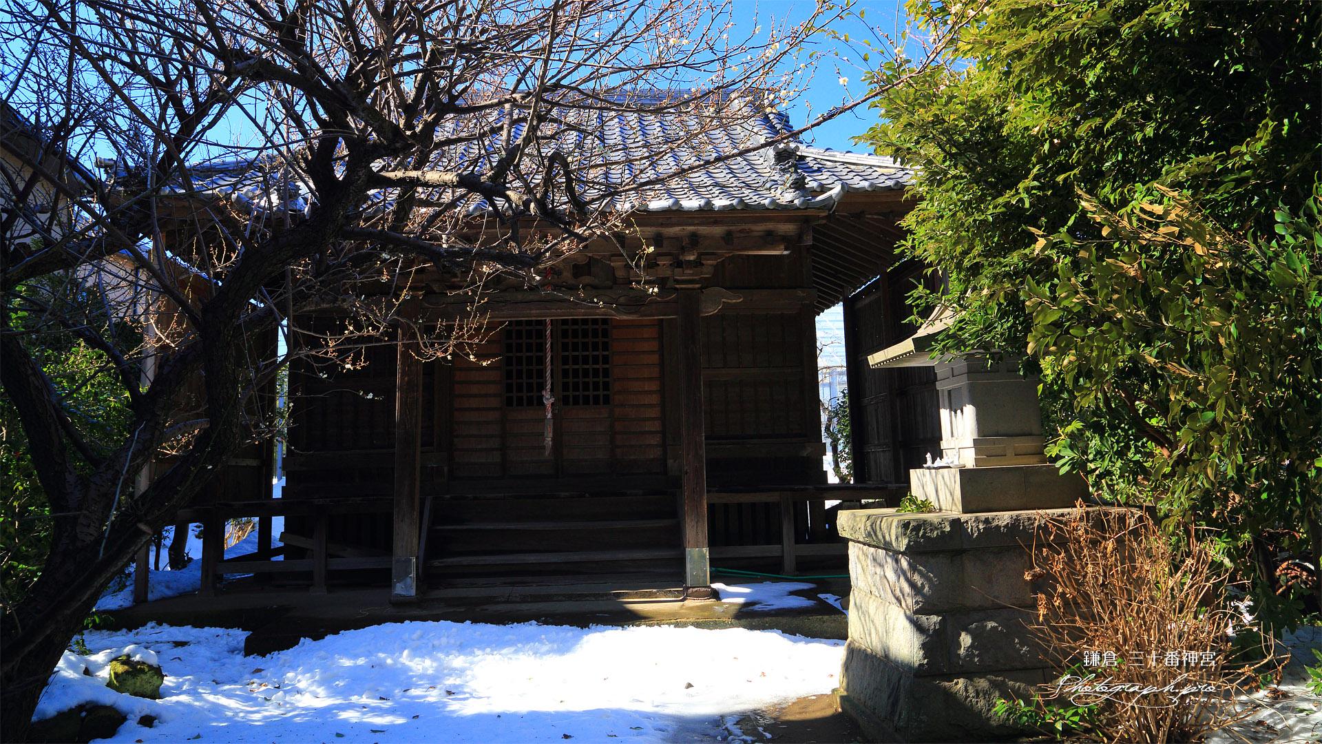 鎌倉手広 白梅と残雪の三十番神宮