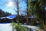 妙法寺(山崎) 雪折れ竹