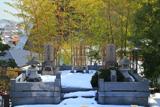 小泉家墓所