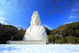 大船観音寺 残雪の白衣観音像