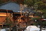 大長寺 白梅と残雪
