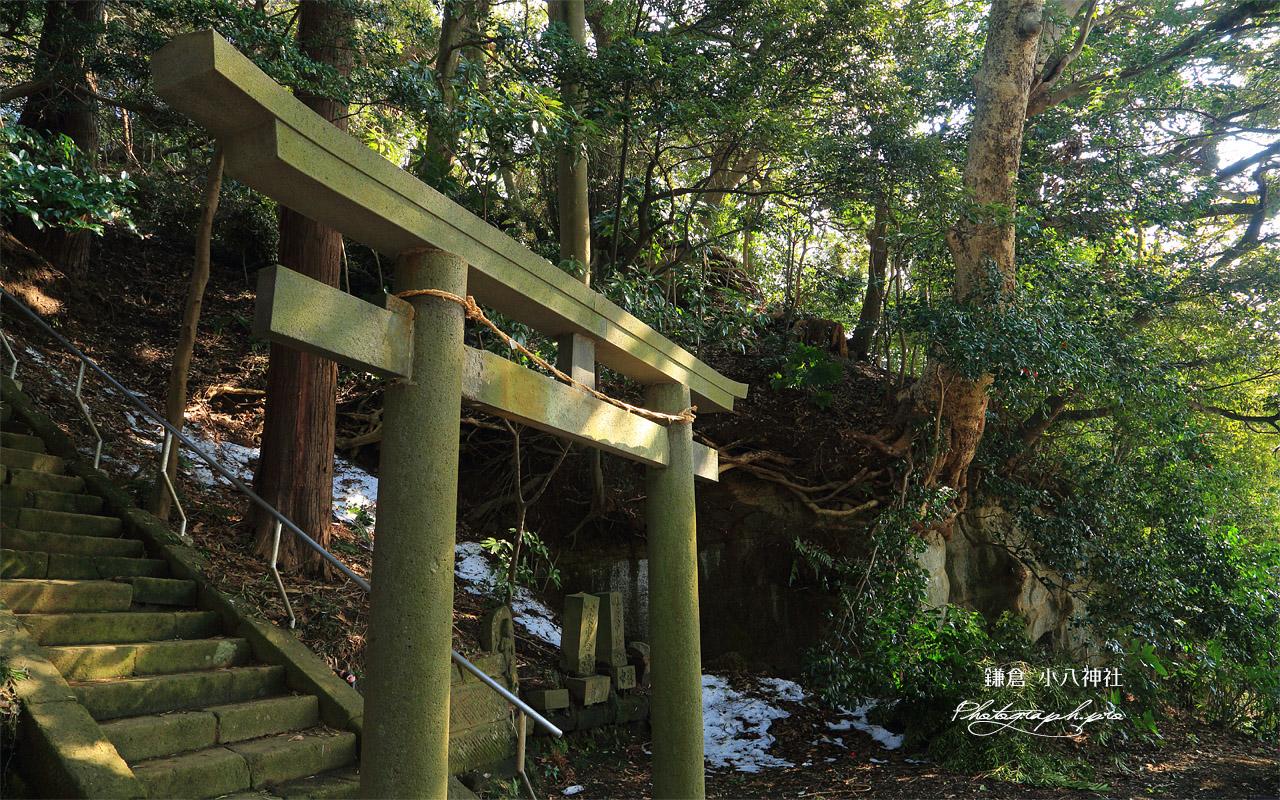 鎌倉台上町 残雪の小八神社 壁紙