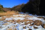 斑雪の広町緑地