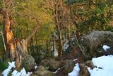 鎌倉 天園の残雪