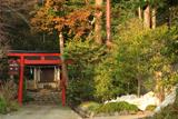 鎌倉 残雪の新宮