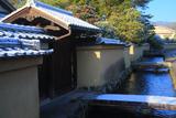 上賀茂社家町 淡雪と椿