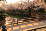 兼六園の花見橋