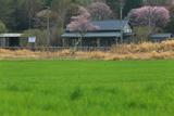 別海町 旧奥行臼駅