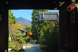 天寧寺 額縁門越しの雑木紅葉の比叡山