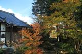 小町寺 黄葉の本堂