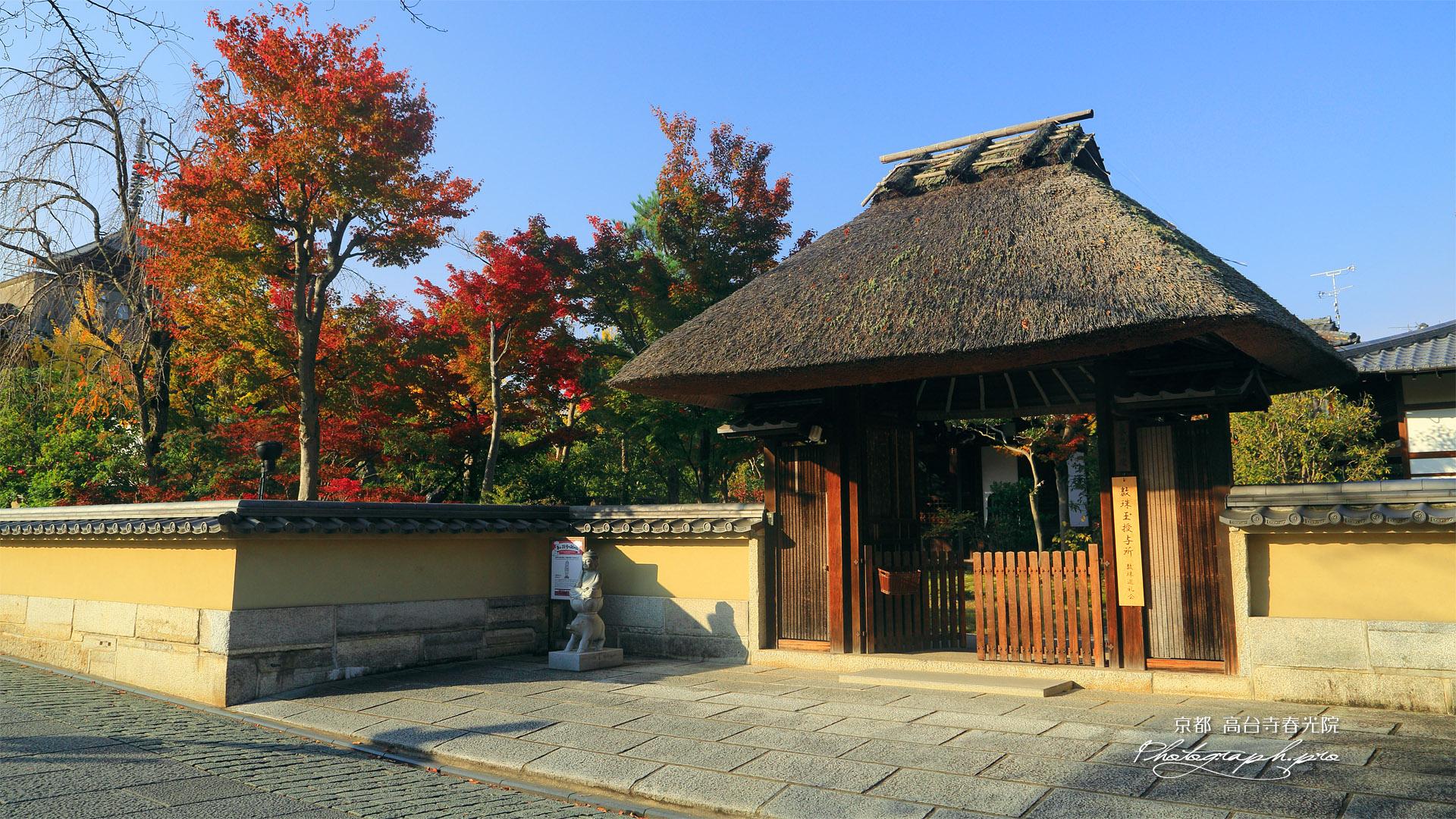 春光院 山門と紅葉