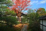 禅居庵 桜紅葉と庫裡