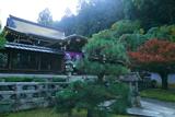 佛光寺本廟 御廟と紅葉