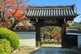 満願寺 桜紅葉と表門