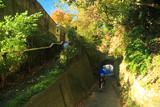 鎌倉台上町 雑木紅葉の市場隧道