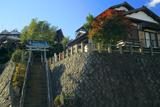 鎌倉台下町 紅葉の神明神社