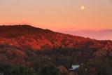 雑木紅葉の円覚寺と夕月