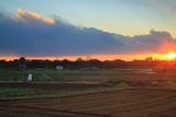 鎌倉 関谷農地の時雨夕陽