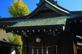 鎌倉台下町 塩釜神社の銀杏黄葉