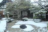 相国寺慈雲院 雪降る前庭