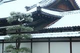 大聖寺 屋根雪の本堂