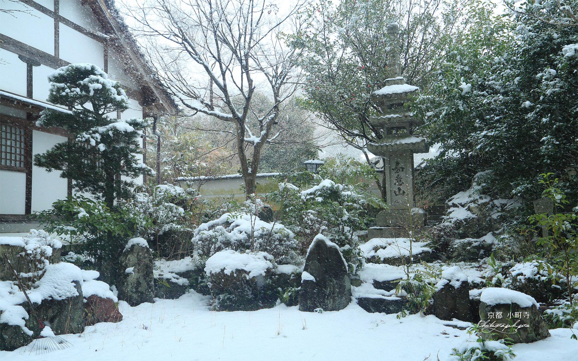 小町寺 雪の庭園