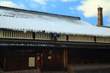 月桂冠大倉記念館 巻き垂れ雪と酒林