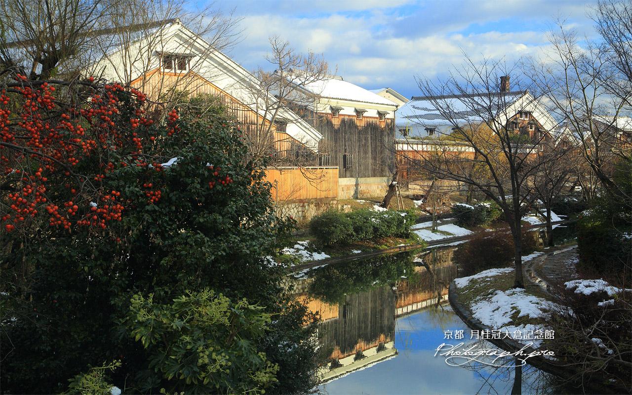 月桂冠大倉記念館 柿と斑雪の濠川酒蔵風景 壁紙