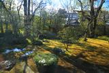 衡梅院 斑雪の方丈庭園