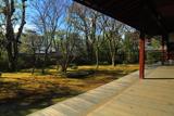 衡梅院 冬枯れの四河一源の庭