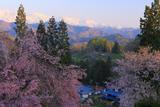 小川村 白馬連峰と表立屋集落