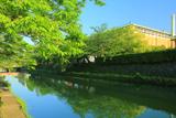 岡崎 新緑の疏水と京都市美術館